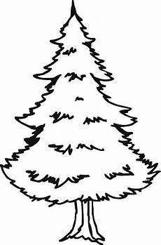 pino laso para colorear dibujo de un pino para colorear imagui