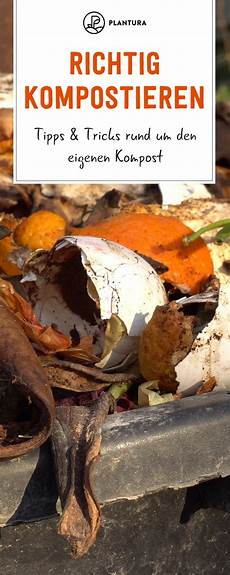 richtig duebeln tipps und tricks rund um den richtig kompostieren tipps tricks rund um den eigenen