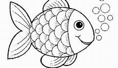 Ausmalbilder Verschiedene Fische 48 Best Fotografie Fisch Bilder Kostenlos