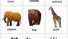 Nama Hewan Dalam Bahasa Inggris 2 Belajar Bahasa Inggris