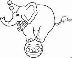 Ausmalbilder Zirkus Elefant Zirkuselefant Auf Ausmalbild Malvorlage Tiere