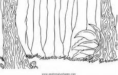 Malvorlagen Urwald Wald Urwald 0 Gratis Malvorlage In Diverse Malvorlagen