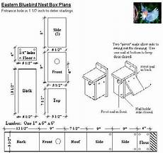 bluebird house plans beautiful blue bird house plans new home plans design