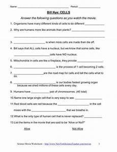 grade 8 science worksheets 13462 8th grade science worksheets homeschooldressage