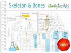skeleton and bones 10x games and activities ks2 ks3 by