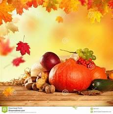 Malvorlagen Herbst Obst Herbst Erntete Obst Und Gem 252 Se Auf Holz Stockbild Bild