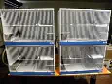 gabbie da per canarini usate batteria gabbie uccelli salve come cerca compra