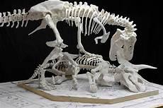 malvorlagen dinosaurier t rex quest x13 ein bild zeichnen