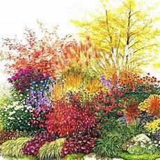 fleur vivace plein soleil massif de vivaces plein soleil achat vente arbre buisson massif de vivaces plein soleil