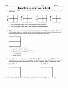 15 best images of pedigree problem worksheet answers