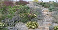pflanzen trockener standort kiesbeete garten und freiraum regine ege und harald conrad