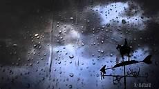 bruit de pluie et vent pluie tonnerre et vent fort la nuit soulage le stress sommeil r 233 parateur relaxation