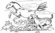 pferd fluechtet vor gepard ausmalbild malvorlage tiere