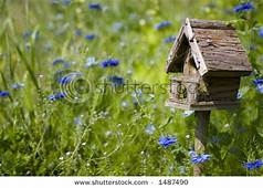 Picture Of A Birdhouse In Natural Setting With