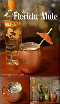 best 25 orange vodka ideas on pinterest fun drinks