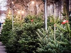 wo weihnachtsbaum kaufen