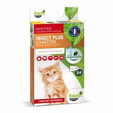 produit anti puce chaton pipettes insect plus chaton naturly s antiparasitaire