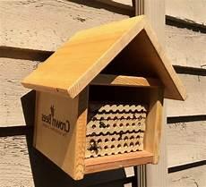 mason bee house plans top 9 diy mason bee house design for beginner mason bee