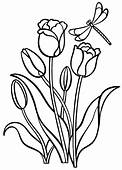 Coloring Page  Tulips