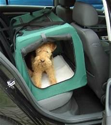 hundetransport auto rückbank der hund im auto haustiersuche at