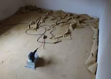 teppichersatz durch laminat in turbenthal bau fair