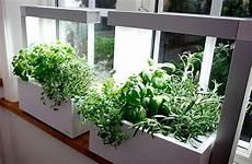 potager appartement potager d int 233 rieur facile d herbes et l 233 gumes