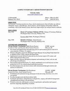 cv template veterinary student 1 cv template student resume resume format resume exles
