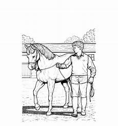 Malvorlage Tiere Pferde Pferde 00009 Gratis Malvorlage In Pferde Tiere Ausmalen