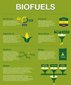 bio fuels infographic biofuels biogas bioethers syngas biodiesel vegetableoil biomass energy