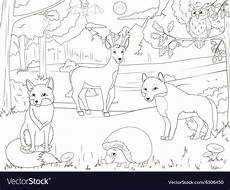 coloring book forest with animals vector image