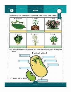 genius kids worksheets for class 5 5th grade math english science shop flipclass com