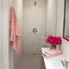 Bathroom Ideas Pink And Grey by Grey And Pink Bathroom Ideas Information