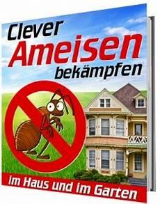 Ameisen Bekämpfen Wohnung - ameisen in der wohnung entfernen gute erfahrungen de