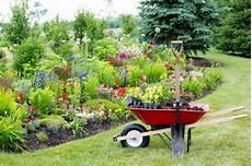jardin en aout que planter au mois d ao 251 t gamm vert