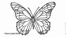 butterfly for adults to color david simchi levi
