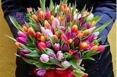 fiore di fiori bertola voglia di primavera