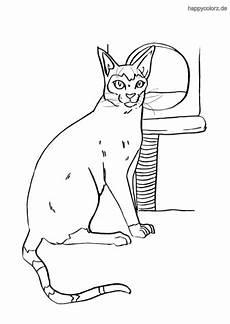 Ausmalbilder Siamkatze Katze Malvorlage Kostenlos 187 Katzen Ausmalbilder