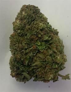acid rock cbd acid rock cbd hemp flower ihf llc