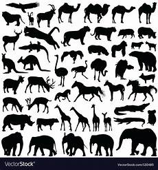 animal silhouettes royalty free vector image vectorstock