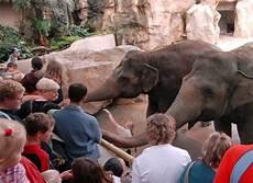 Malvorlagen Elefant Neuwied Malvorlagen Elefant Neuwied Zeichnen Und F 228 Rben