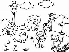 Easy Zoo Coloring Pages Zoo Animal Coloring Pages For Preschool At Getcolorings