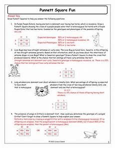 genetics problems worksheet kidz activities