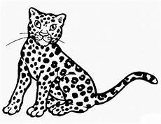 ausmalbilder zum drucken malvorlage gepard kostenlos 2