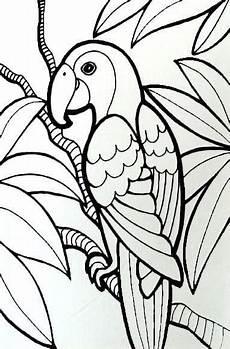 Kumpulan Gambar Untuk Belajar Mewarnai Gambar Burung Yang
