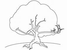 Malvorlagen Kostenlos Baum Ausmalbilder Zum Drucken Malvorlage Baum Kostenlos 3
