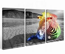 Bild Schwarz Weiß Leinwand - leinwand 3 tlg zebra schwarz wei 223 tier w 252 ste afrika bunt
