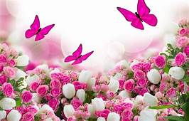 Wallpaper Butterfly Flowers Roses Tulips Leaves Images
