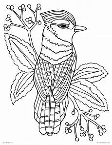 Malvorlagen Senioren Ausdrucken Detailed Animal Coloring Pages For Adults At Getcolorings