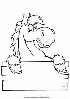 ausmalbilder pferde 12 ausmalbilder zum ausdrucken
