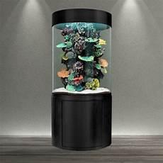 aquarium colonne pas cher aquarium eau de mer colonne